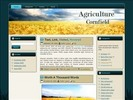 Thumbnail Cornfield WP Theme with Master Resell Rights