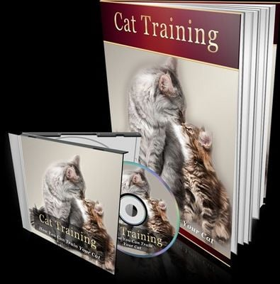 Product picture Cat Training eBook + Audio w/MRR
